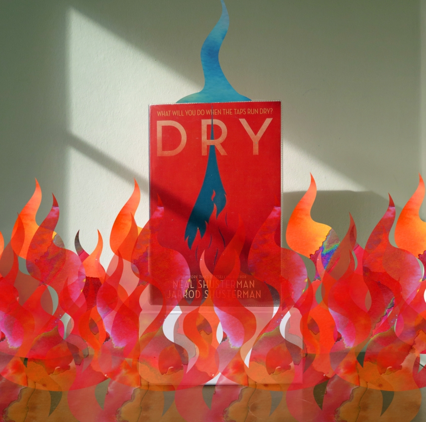 Dry Review